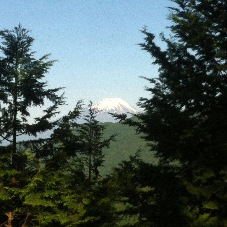 Mount-Tanzawa-Mount-Fuji-First-View