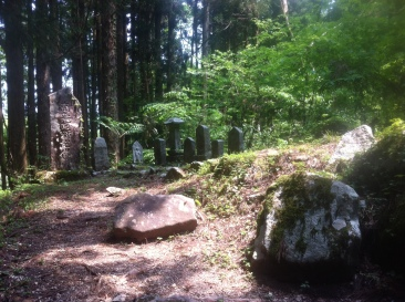 Stone pillars in forest