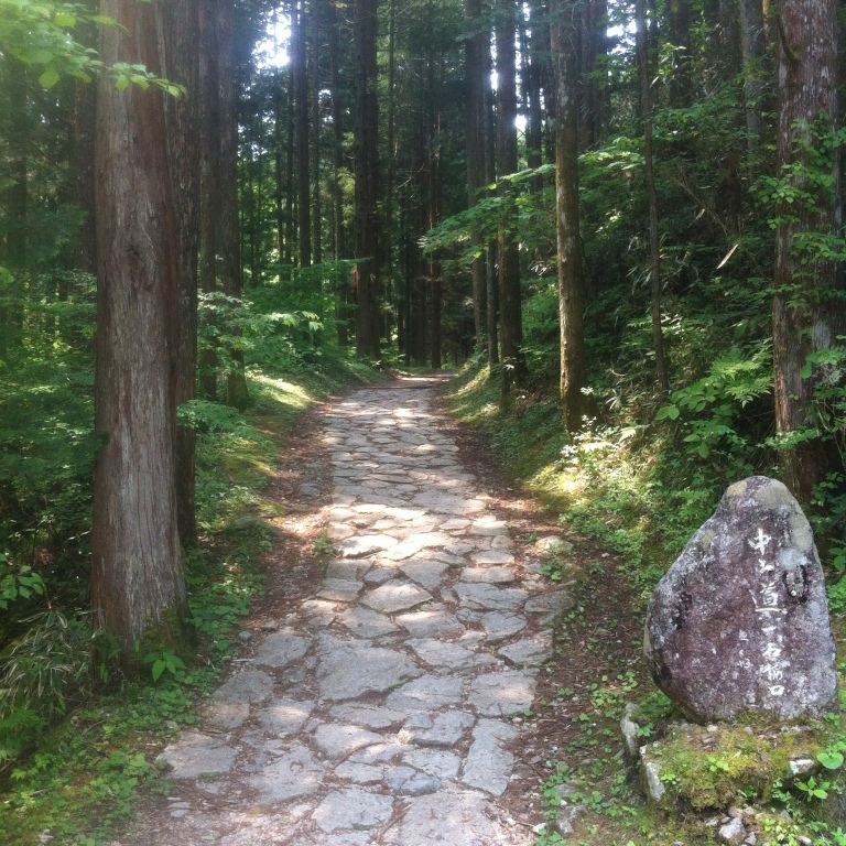 A stone path through a forest