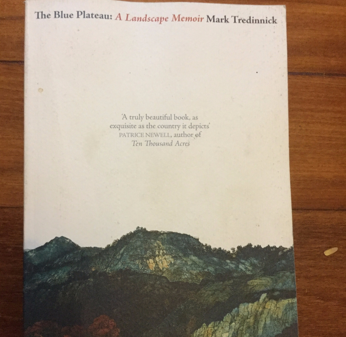 Book Review The Blue Plateau Notebooks Of Tom border=